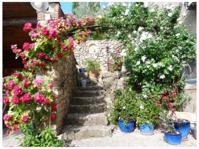 Chambres d'Hôtes Cotignac : Les Fleurs