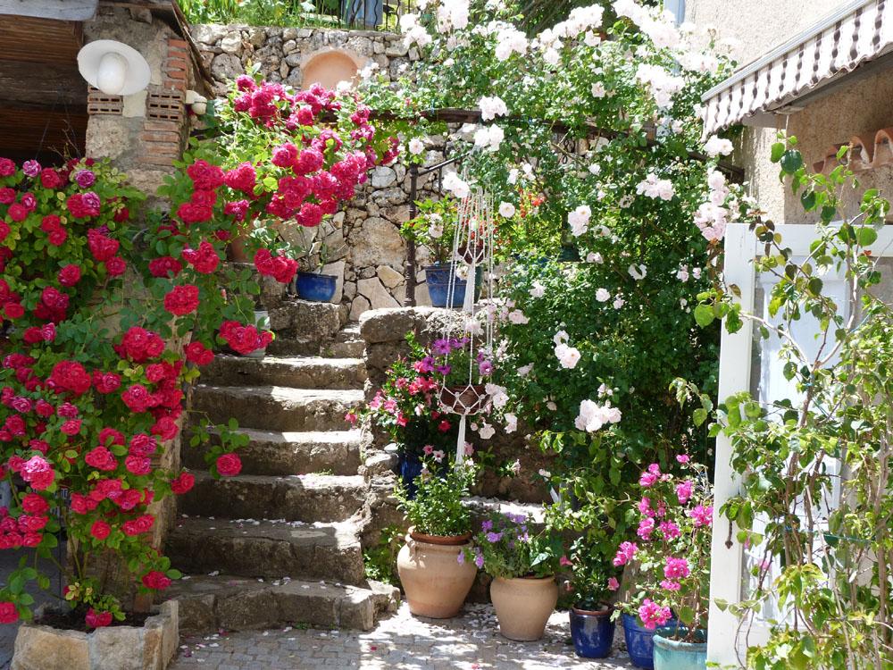 Chambres d'Hôtes Cotignac Les Fleurs 23