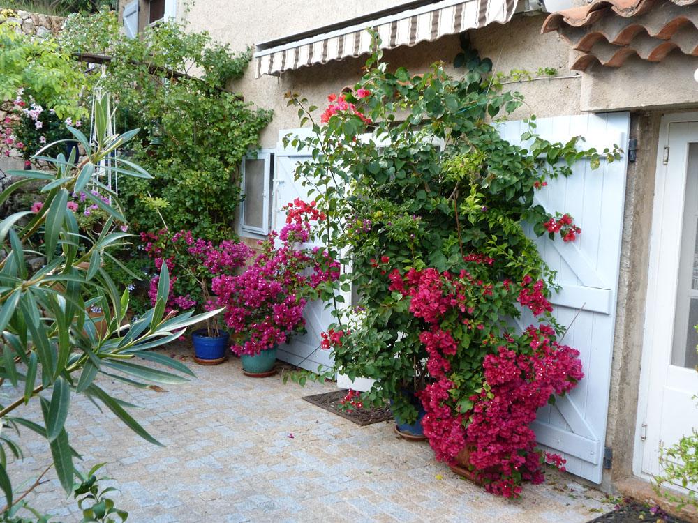 Chambres d'Hôtes Cotignac Les Fleurs 28